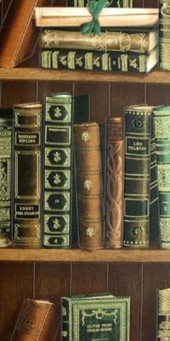 Библиотека 2003-04 обои винил на бум.осн.0,53*10м