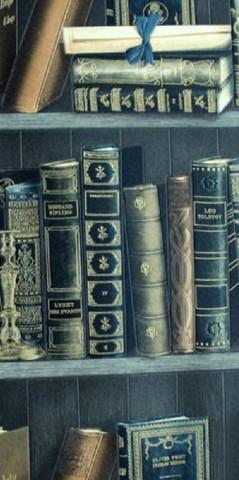Библиотека 2003-03 обои винил на бум.осн.0,53*10м