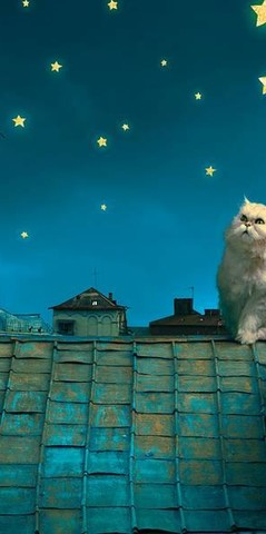 Лунный кот Фотообои VIP 294см х 260см Тула