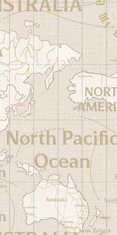 168436-12 обои WORLD MAPS винил горячего тиснения на флиз.осн. 1,06*10м/Индустрия (к 168437-02)