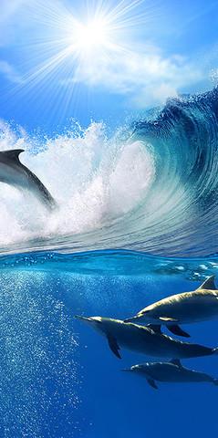 В-066 Дельфины в волнах  300*270 см ФОТОПАННО