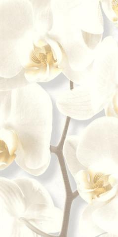10107-11 обои Орхидея вспененный винил на бум.осн.0,53*10м/Аспект/к 10108-11