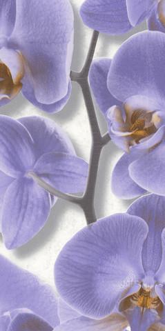 10107-46 обои Орхидея вспененный винил на бум.осн.0,53*10м/Аспект/к 10108-46