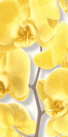 10107-23 обои Орхидея вспененный винил на бум.осн.0,53*10м/Аспект/к 10108-23