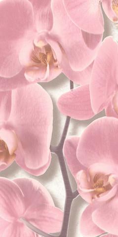 10107-25 обои Орхидея вспененный винил на бум.осн.0,53*10м/Аспект/к 10108-25